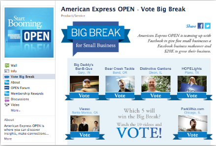 American Express OPEN