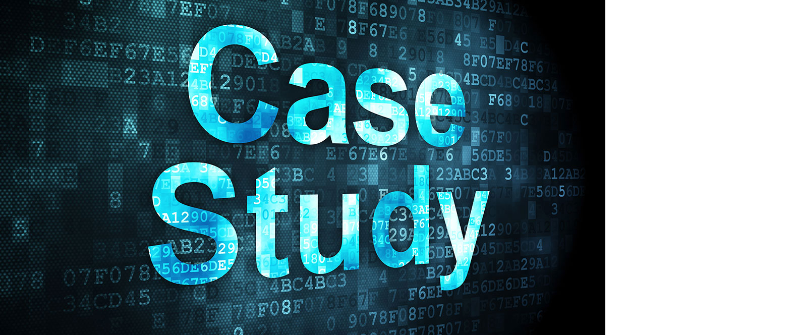 suji i n s case study Define the main principles, and analyse the advantages and limitations of one of the following research methods: (i) single case study analysis.