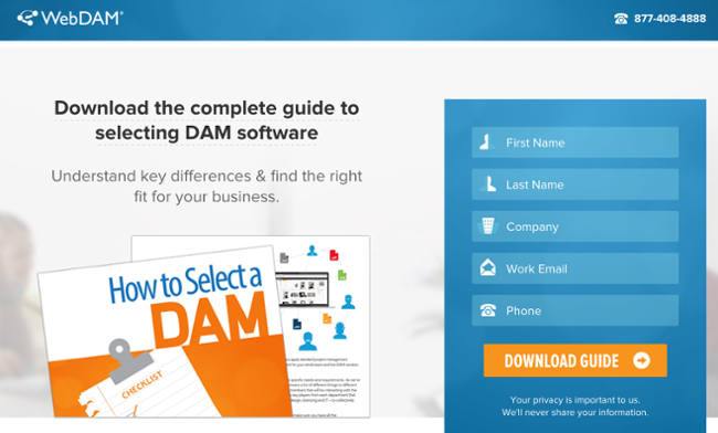 free-guide-in-the-form-landing-page-content-of-webdam