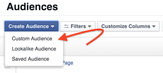 an-example-of-custom-audiences-in-facebook