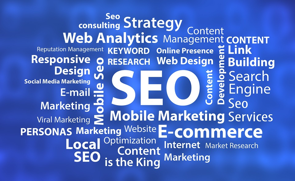 SEO areas for SEO expert