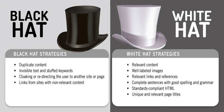 SEO Expert - Black Hat White Hat