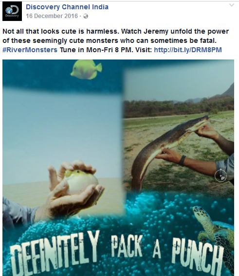 Discovery India's 'River Monsters' achieved 7x Organic reach on Facebook