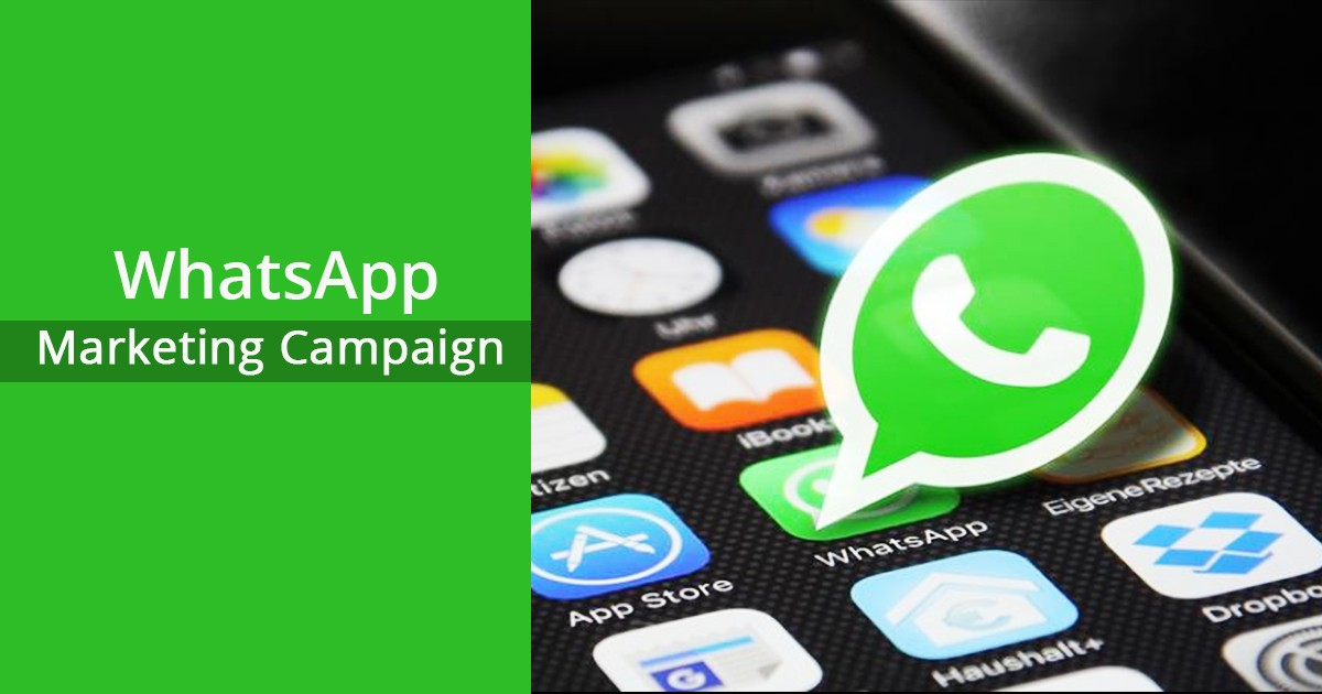 Develop WhatsApp Marketing Campaign in 5 Steps