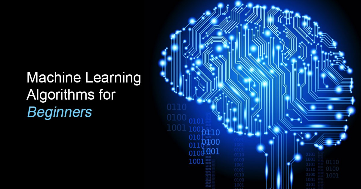 Top 10 Machine Learning Algorithms for Beginners