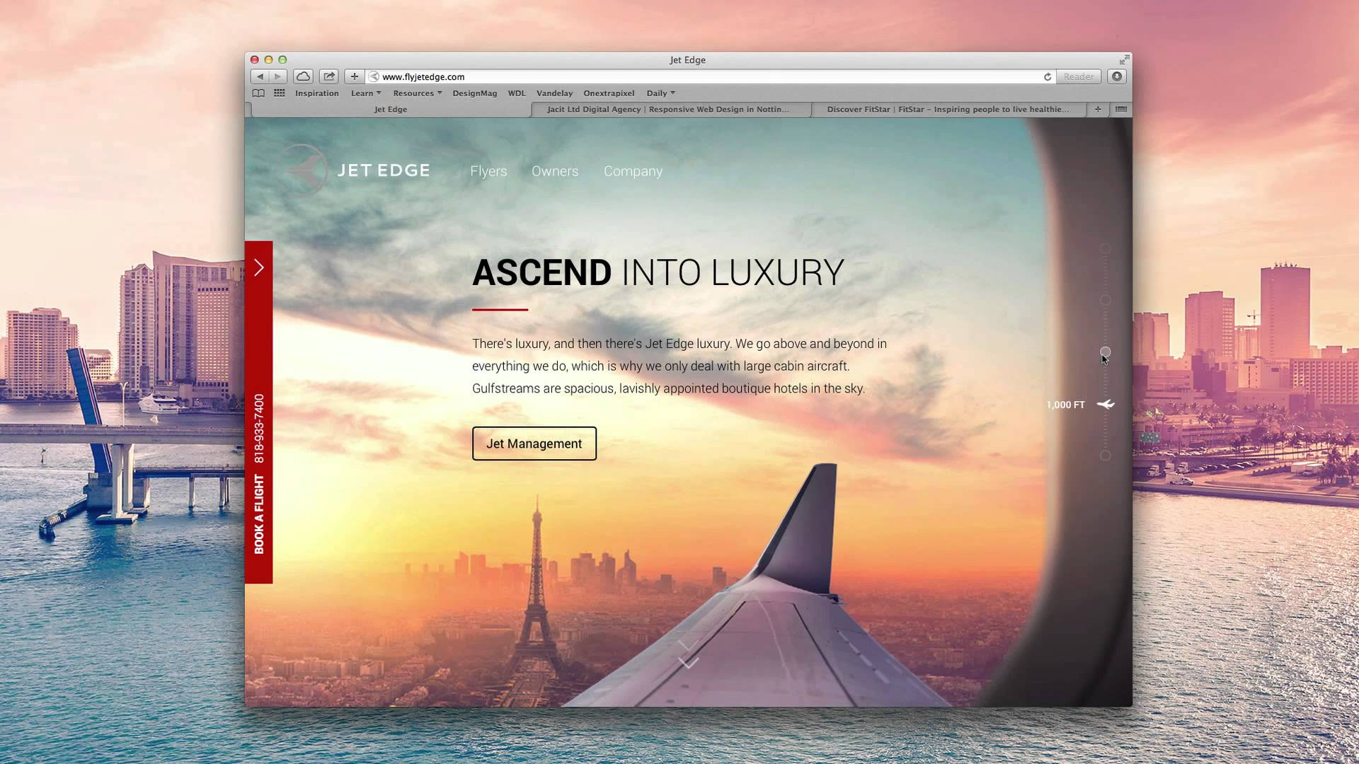 Top 10 Website Designs