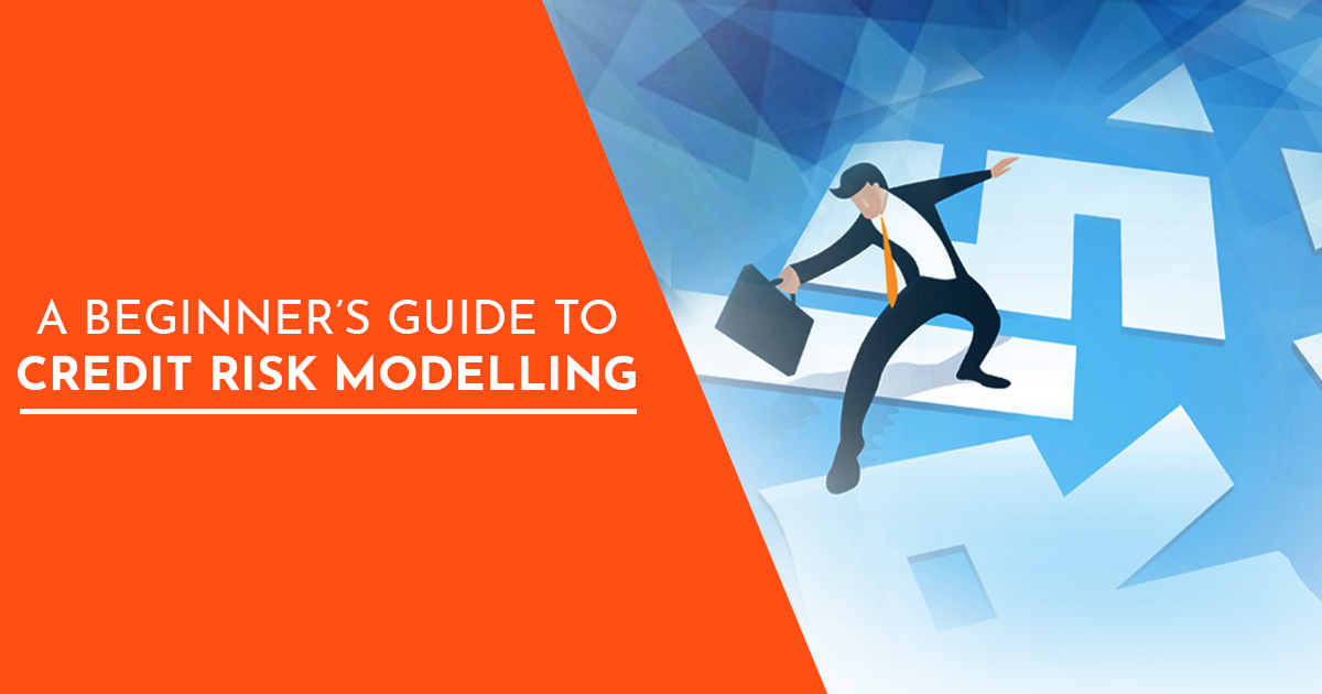 A Beginner's Guide to Credit Risk Modelling