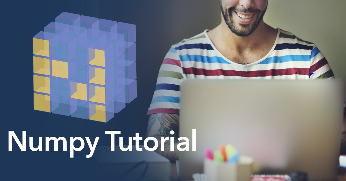 A Complete Step-By-Step Numpy Tutorial