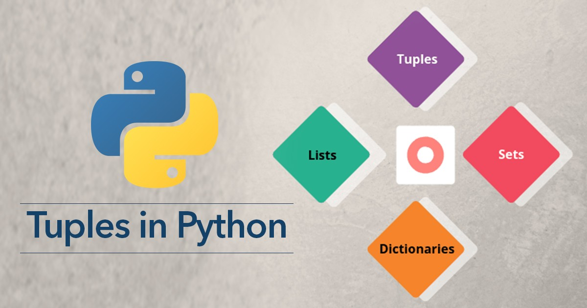 Everything You Need to Know About Tuples in Python