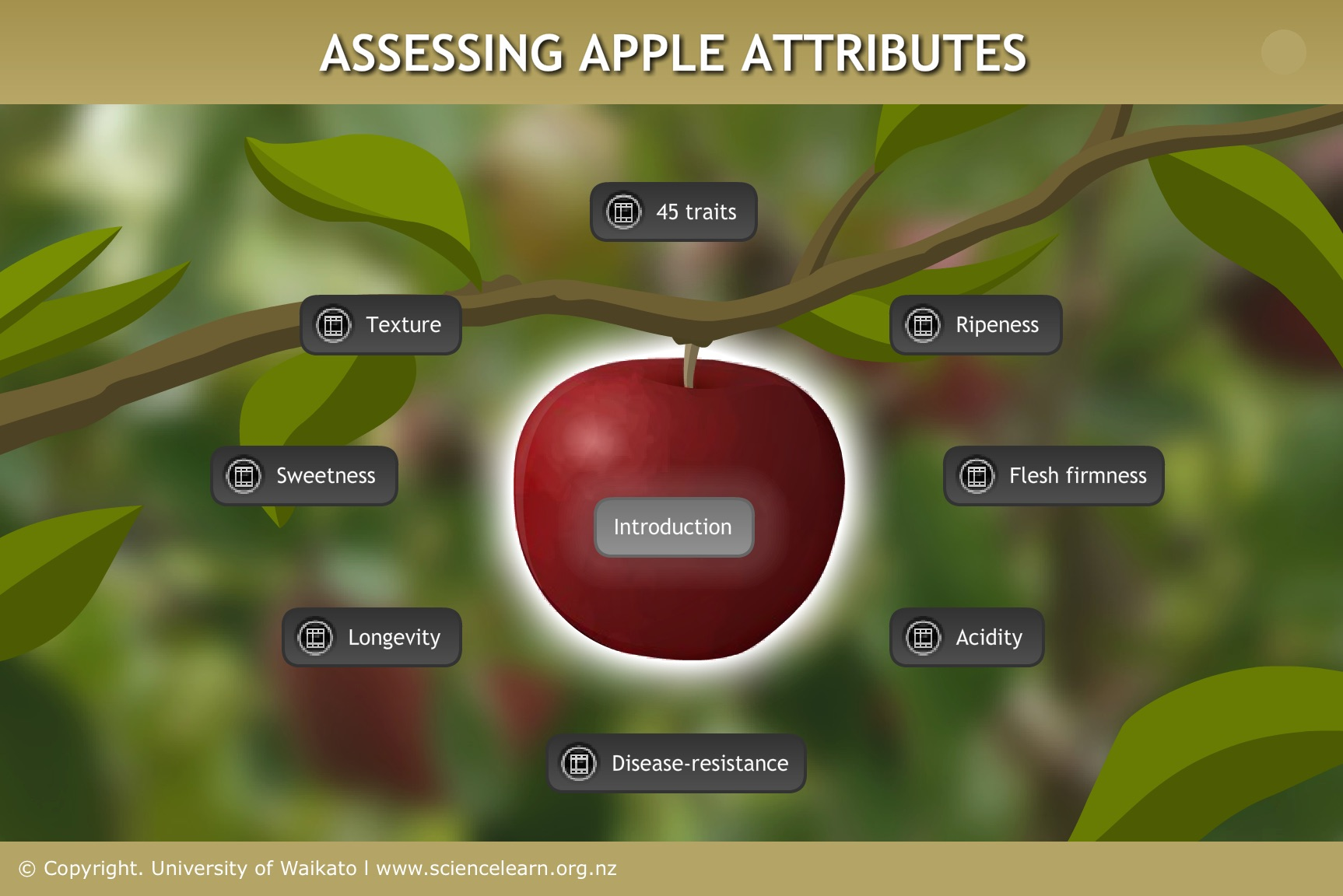 Various Attributes - Image Source - Science Learning Hub