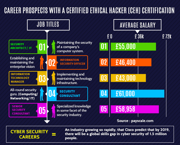 Ethical Hacker Career Prospects Source - LiveWireIndia