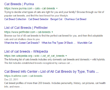 Google Search for Cat Breeds