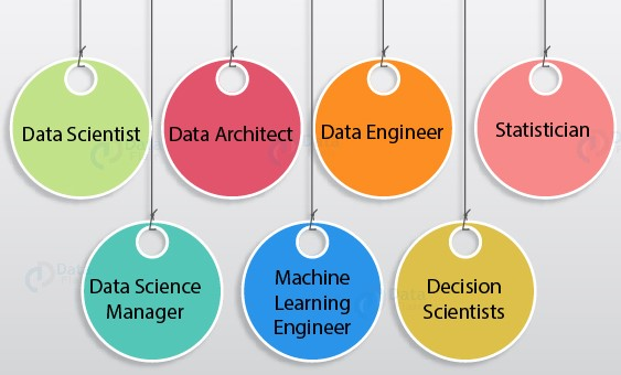 Data Science Job Roles