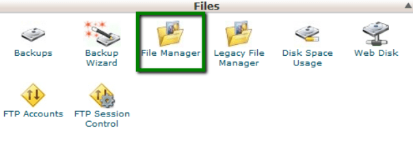 Using the File Manager for running Python Scripts