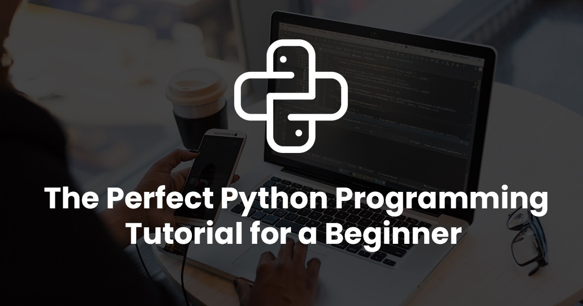 The Perfect Python Programming Tutorial for a Beginner