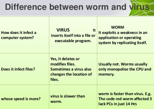 Difference between a Worm & a Virus