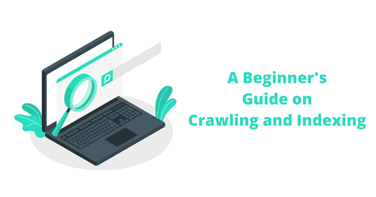 A Beginner's Guide on Crawling and Indexing